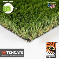Everglade Fescue - $2.99 sq. ft.